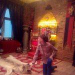 """11.11.17 День Рождения в стиле СуперКрокодил от агентства праздников """"Мафия СПб"""""""